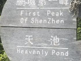 刘连康:深圳最高峰梧桐山,就这样被我们给征服了!