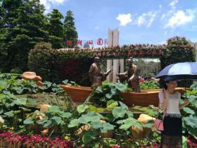 刘连康:深圳罗湖是我去过最无聊的地方